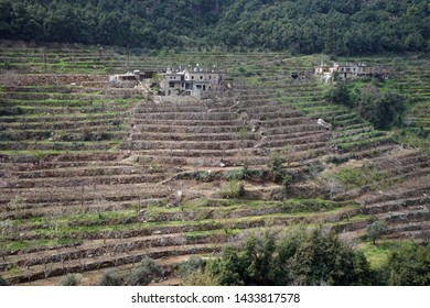 Terrases and farmhouses on the slope of Kadisha valley, Lebanon