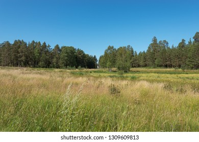 The territory of St. Vladimir's Skete. The wonderful island Valaam is located on Lake Lodozhskoye, Karelia. Balaam - a step to heaven