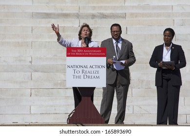 Terry O'Neill, President of National Organization of Women speaks at the 50th Anniversary march on Washington and Martin Luther King's Speech, August 24, 2013, Lincoln Memorial, Washington, D.C.
