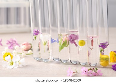 Test tubes with different flowers on white wooden table. Essential oil extraction