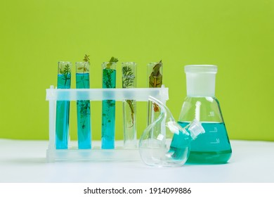 Test tubes and other laboratory glassware with different plants on green background