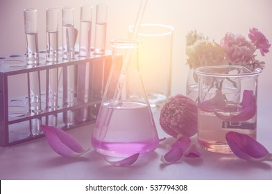 Test tubes in rack with chemical in erlenmeyer flask and flowers in beaker for laboratory test