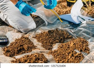 Testing Soil. Agronomist opening soil sample bag in the field. Environmental protection, organic soil certification, Soil Fertility Analysis