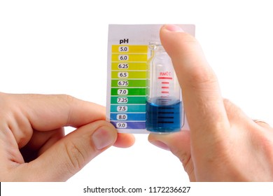 Testing water pH at home. Man determining water pH by comparing the color of liquid in testing vials with attached color scale. Water is alkaline
