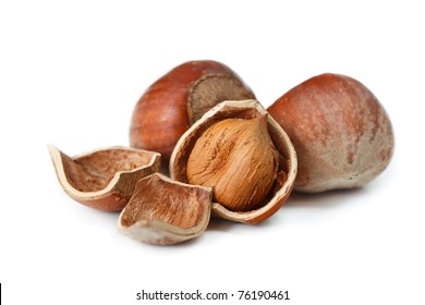 Testy hazelnuts on a white background.