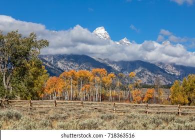 Teton Landscape in Fall