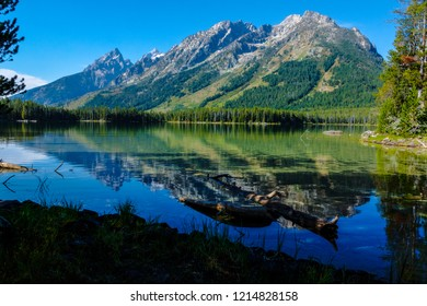 The Teton peaks form a perfect mirror  image in Leigh Lake in Grand Teton National Park in Wyoming. Large logs are seen near and on the surface of the lake.