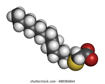 Tetradecylthioacetic acid (TTA) synthetic fatty acid molecule. 3D rendering. Atoms are represented as spheres with conventional color coding: hydrogen (white), carbon (grey), oxygen (red), etc