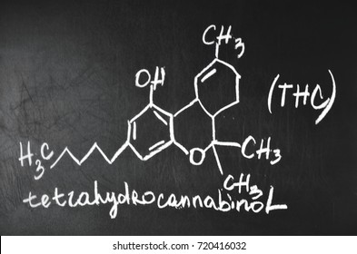 Tetrahydrocannabinol and drawn his chemical formula. Structural model of THC molecule on the blackboard.