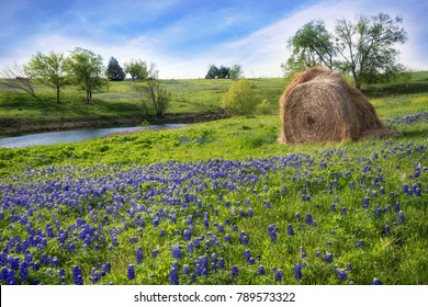 Texas farmland with creek, hay bale, and blooming bluebonnets in the spring