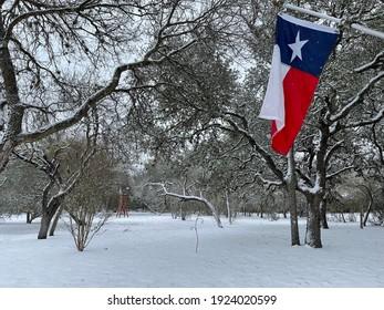 Texas flag against snowy landscape background