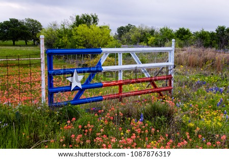 Texas Flag Gate in a field of Paintbrush, Bluebonnets and Yellow flowers.