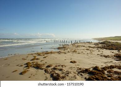 Texas Gulf coast beach near Corpus Christi after a storm.