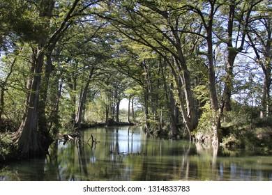 texas louisiana nature