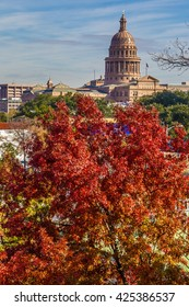 Texas State Capitol behind the fire red tree in winter