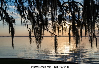 Texas Sunset over Lake Livingston through Spanish Moss