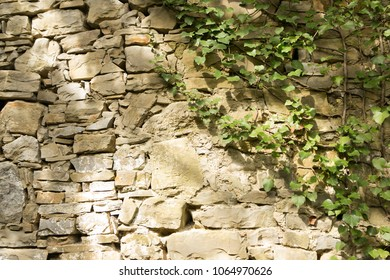 texstured stones on the wall