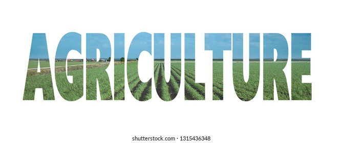 Text cutout filled with image of cultivated fields in rows with blue sky. Text reads agriculture
