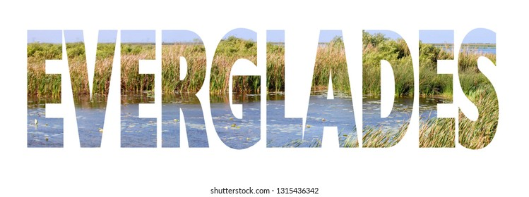 Text cutout filled with image of the Florida Everglades with fresh water grasses and blue water. Text reads everglades