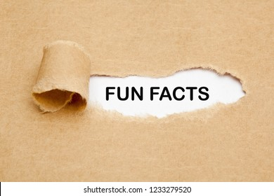 Text Fun Facts appearing through a hole in ripped brown paper.