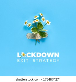 Text Lockdown exit strategy. Chamomile flowers attached with medical aid patch to blue mint background. Creative minimalist square flat lay.