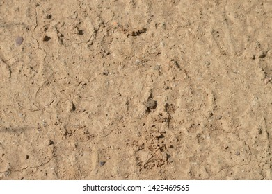 texture of arid earth with orange sand