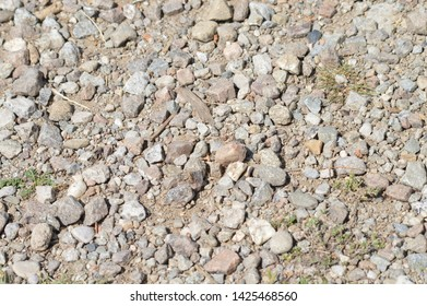 texture of arid earth with stones