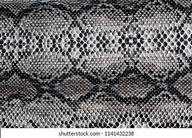 texture artificial skin similar to a snake