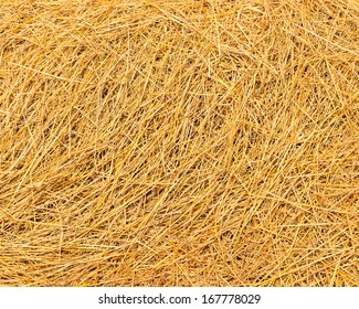 Texture background, Close up rice straw, food for animals farm in after harvest season