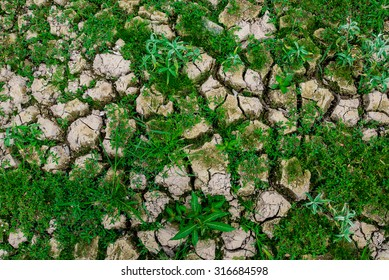 texture and background, drought land of dry season in Thailand