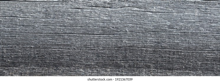 Texture for the background of natural aged wood in gray. Rough wood treatment
