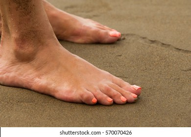 Texture, background. the sand on the beach. loose granular substance, pale yellowish brown, resulting from the erosion of siliceous and other rocks and forming a major constituent of beaches,
