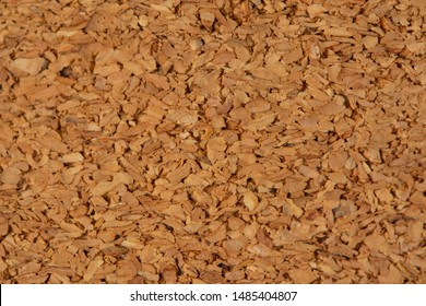 texture of balsa wood material close-up macro, high resolution