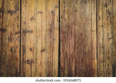 texture of bark wood use as natural background.Brown wood texture. Abstract background, empty template.Selective focus.