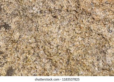 Texture of beige granular stone