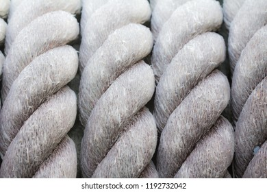 Texture of big rope for background