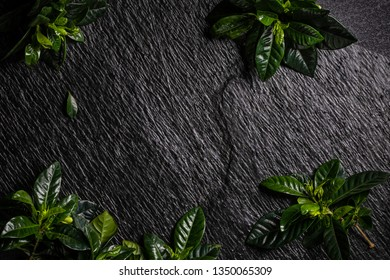 texture of black stone with green leaves