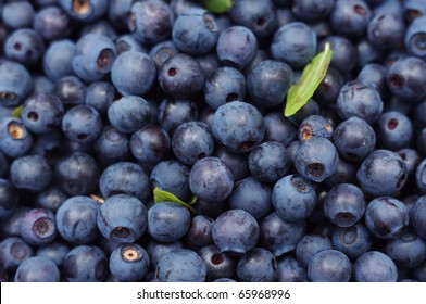 texture of blueberries