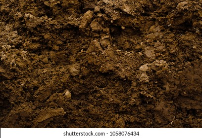 Texture of brown agrictultural soil