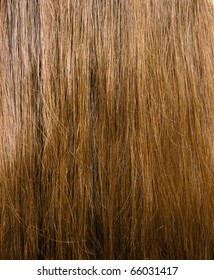 Texture of brown female long hair