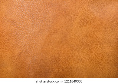 Texture of brown leather material. Top view. copy space.