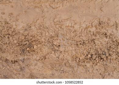 Texture of brown mud. Slobber desktop image.