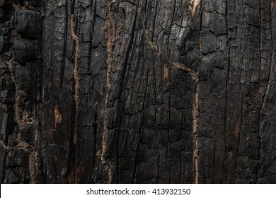 Texture of charcoal