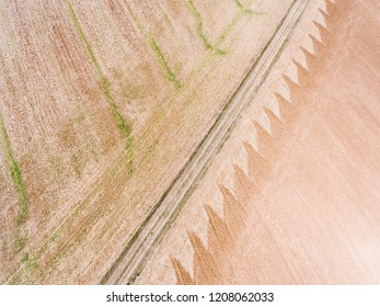 Texture in the country, Saint-Cyr-les-Colons, Yonne, Bourgogne-Franche-Comte, France