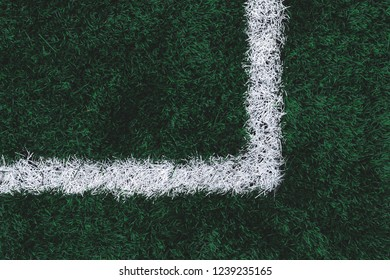 the texture of the cover a football field