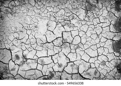 The texture of cracked earth