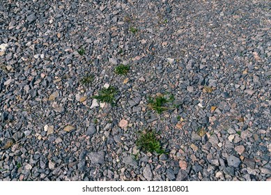 Texture of crushed stone with grass bushes