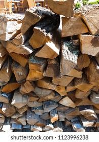 Texture of cut tree trunks.