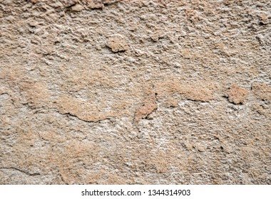 Texture of decorative plaster or concrete. Abstract plaster background for design