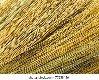 Texture of Drongamaporngry broom